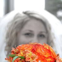 Flowers & Decor, Photography, Bride Bouquets, Bride, Flowers, Bouquet, Seattle, Evidence photography and design