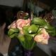 1375029714_small_thumb_07ddd0c141d7119030d7610f384e2230