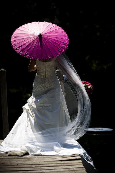 Parasol, Fuchsia