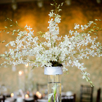 Flowers & Decor, Centerpieces, Flowers, Centerpiece, Honey bee weddings