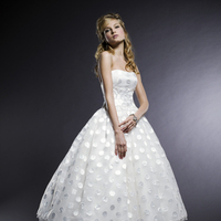 Wedding Dresses, Fashion, dress, Michelle roth