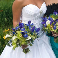 Flowers & Decor, white, blue, green, Flowers, Teal, Bouquets, Peacock feathers, Floral verde llc