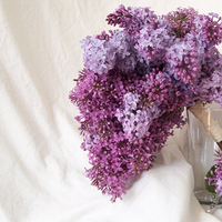 Flowers & Decor, purple, Bride Bouquets, Boutonnieres, Flowers, Bouquet, Boutonniere, Lilac, Floral verde llc