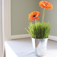 Flowers & Decor, orange, green, Centerpieces, Flowers, Centerpiece, Grass, Floral verde llc