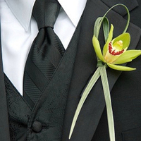 Flowers & Decor, green, Boutonnieres, Flowers, Boutonniere, Floral verde llc