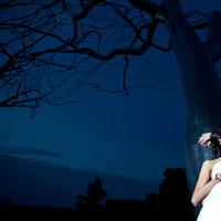 Bride, Groom, And, Tree, Picture, Pictures, Art, Museum, Lynn michelle photography, Midnight
