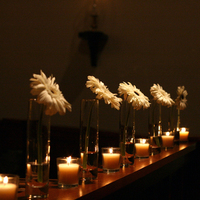 Flowers & Decor, white, Flowers, Daisy, Altar, Gerbera