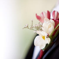 Flowers & Decor, Boutonnieres, Flowers, Boutonniere