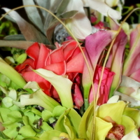Flowers & Decor, Destinations, Hawaii, Bride Bouquets, Flowers, Bouquet, Color, K mycia photography