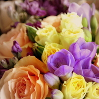 Flowers & Decor, yellow, purple, blue, Bride Bouquets, Flowers, Roses, Bouquet, Peach, Color, Sepia, K mycia photography