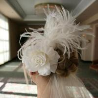 Beauty, Feathers, Bridal, Headpiece, Fascinator, Feather, Breeziway llc