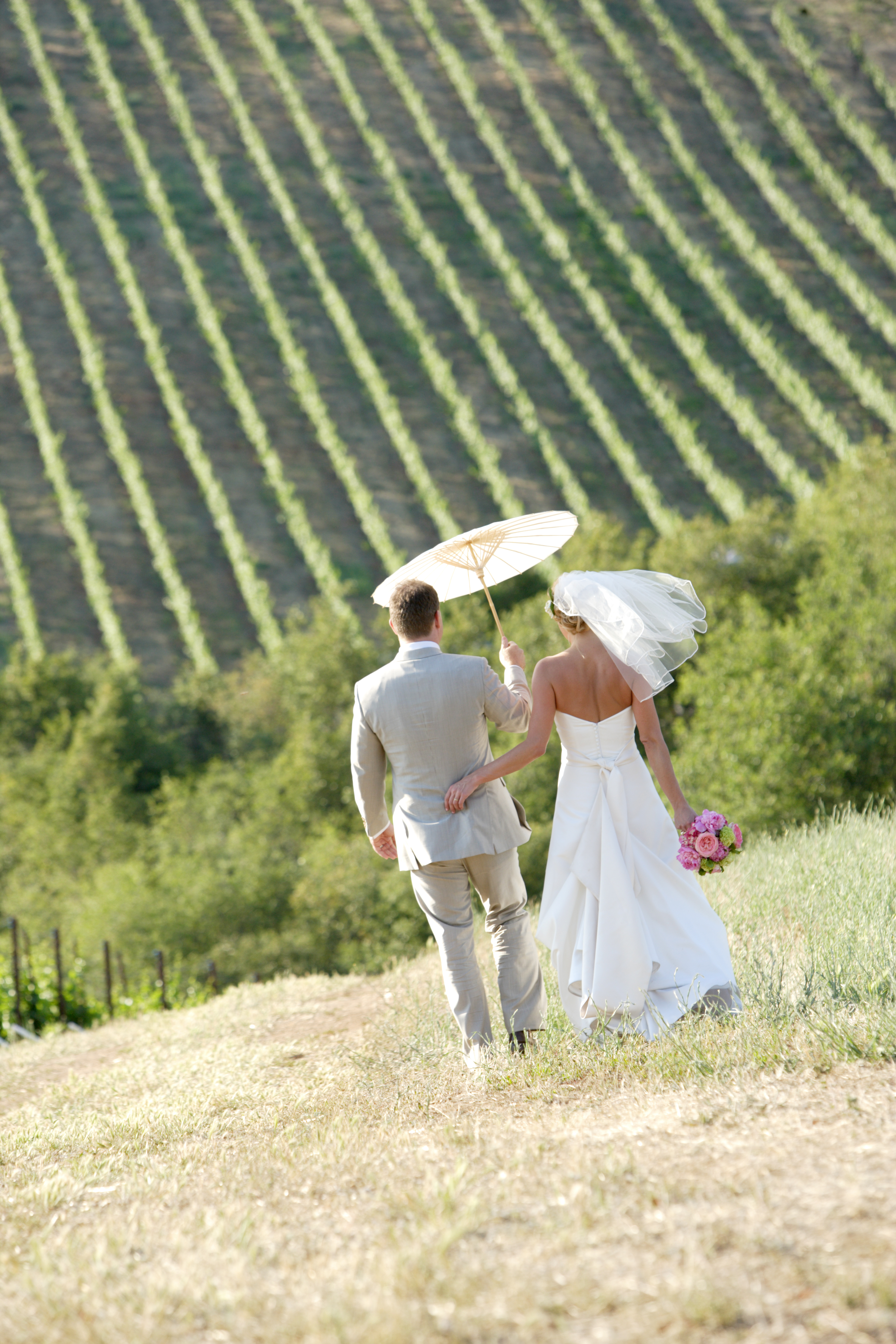 Flowers & Decor, gold, Vineyard, Wedding, Umbrella, Winery, Hill, Married, Country, Just, Foothills, Vines, Modernlite, Stevenot