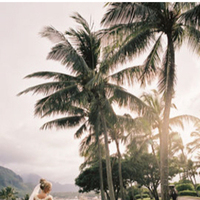 Destinations, Destination Weddings, Hawaii, Bride, Recherche photography, Palm tree