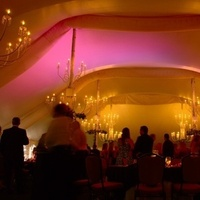 Reception, Flowers & Decor, Lighting, Wedding, Dancing, Rentals