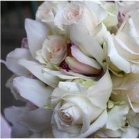 Flowers & Decor, white, Roses, Flower, Bouquet, Orchids, Blush, Events by elaine
