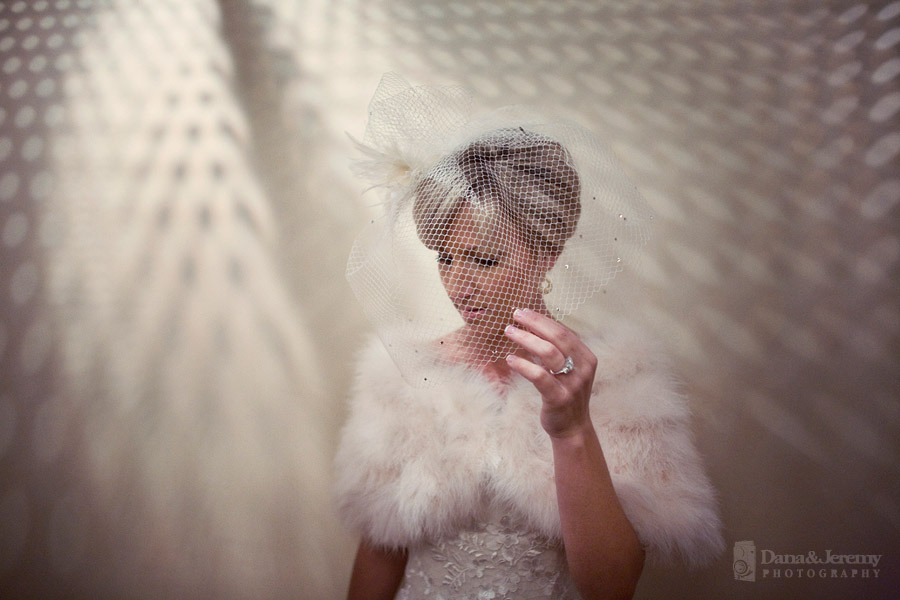 Veils, Vintage Wedding Dresses, Fashion, Vintage, Veil, Birdcage, Dana jeremy photography