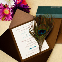 Beauty, ivory, blue, green, brown, Feathers, Peacock, Bronze, Feather, Papercake designs, Pochette, Envelopment