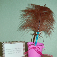Beauty, DIY, pink, brown, Feathers, Guestbook, Turquoise, Pen, Feather
