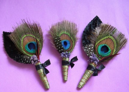 Boutonniere, Peacock