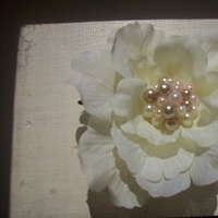 Beauty, Flowers & Decor, ivory, Accessories, Flowers, Hair, Make life pretty