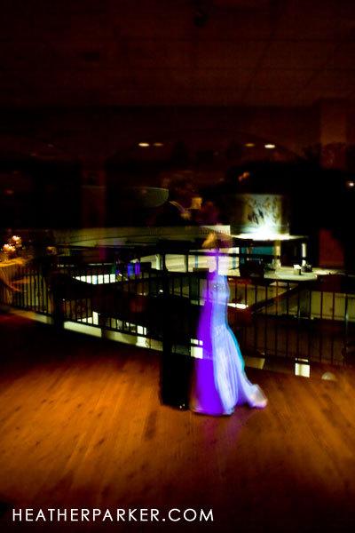 Dance, First, Creative, Zoo, Brookfield, Reflection, Brookfield zoo