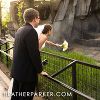Bride, Groom, Wedding, Zoo, Animals, Brookfield, Brookfield zoo