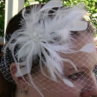 Beauty, Flowers & Decor, Veils, Fashion, Feathers, Comb, Bride, Flower, Veil, Wedding, Hair, Bridal, Birdcage, French, Fascinator, Barrette, Feather, Netting, Russian, Donnaella wedding accessories, Donnaella, Accessoires, Feather Wedding Dresses