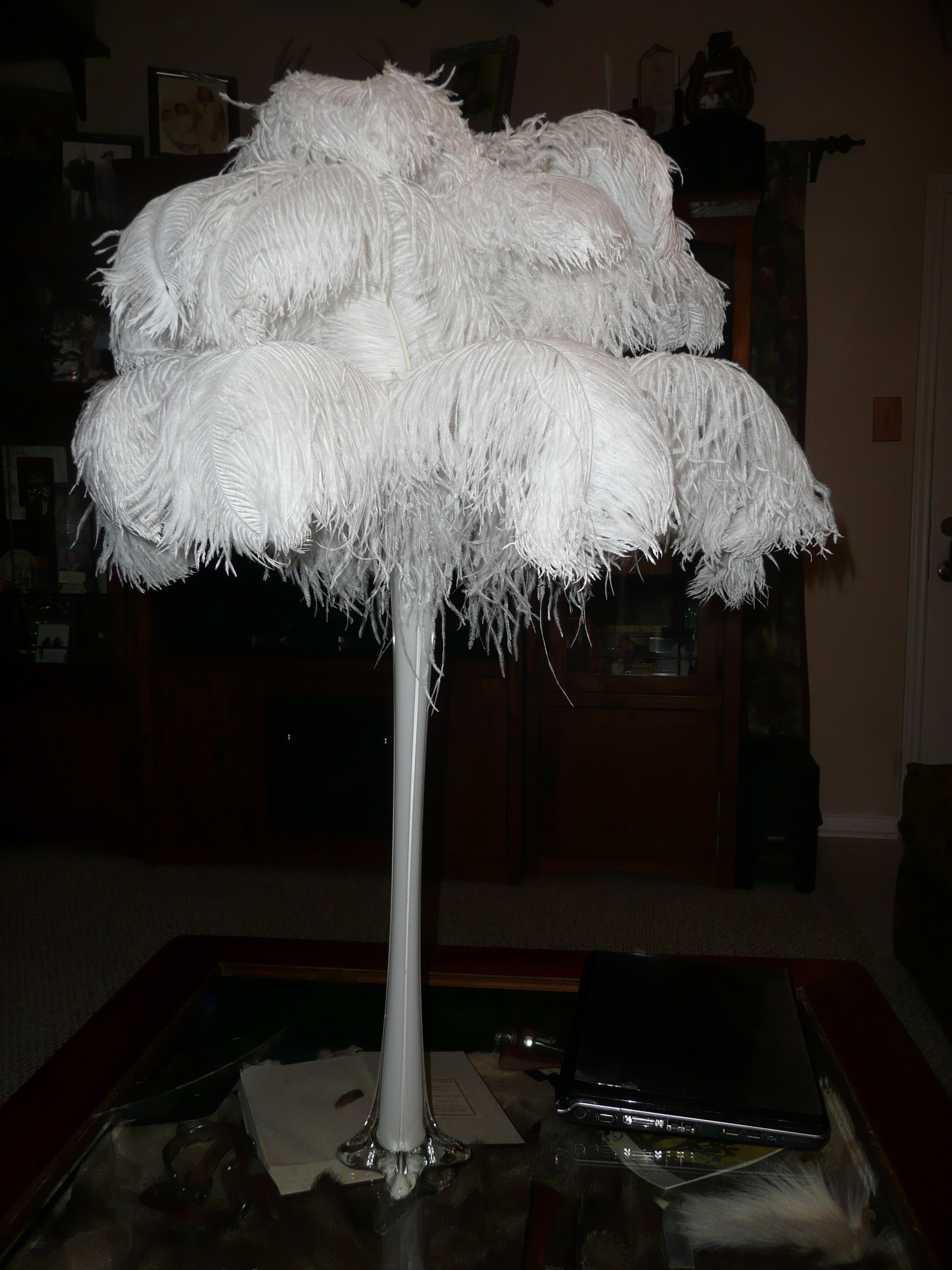 Beauty, Reception, Flowers & Decor, Decor, Feathers, Centerpieces, Centerpiece, Ostrich