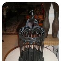 Birdcage, Cardbox