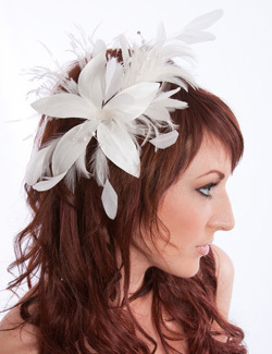 Beauty, Long Hair, Feathers, Wedding, Hair, Long, Piece, Feather, Design visage