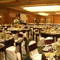 Flowers & Decor, Favors & Gifts, green, brown, Favors, Centerpieces, Flowers, Centerpiece, Tall, Up, Cream, Sheraton, Lights, In the now weddings and events, Cerritos, Amber