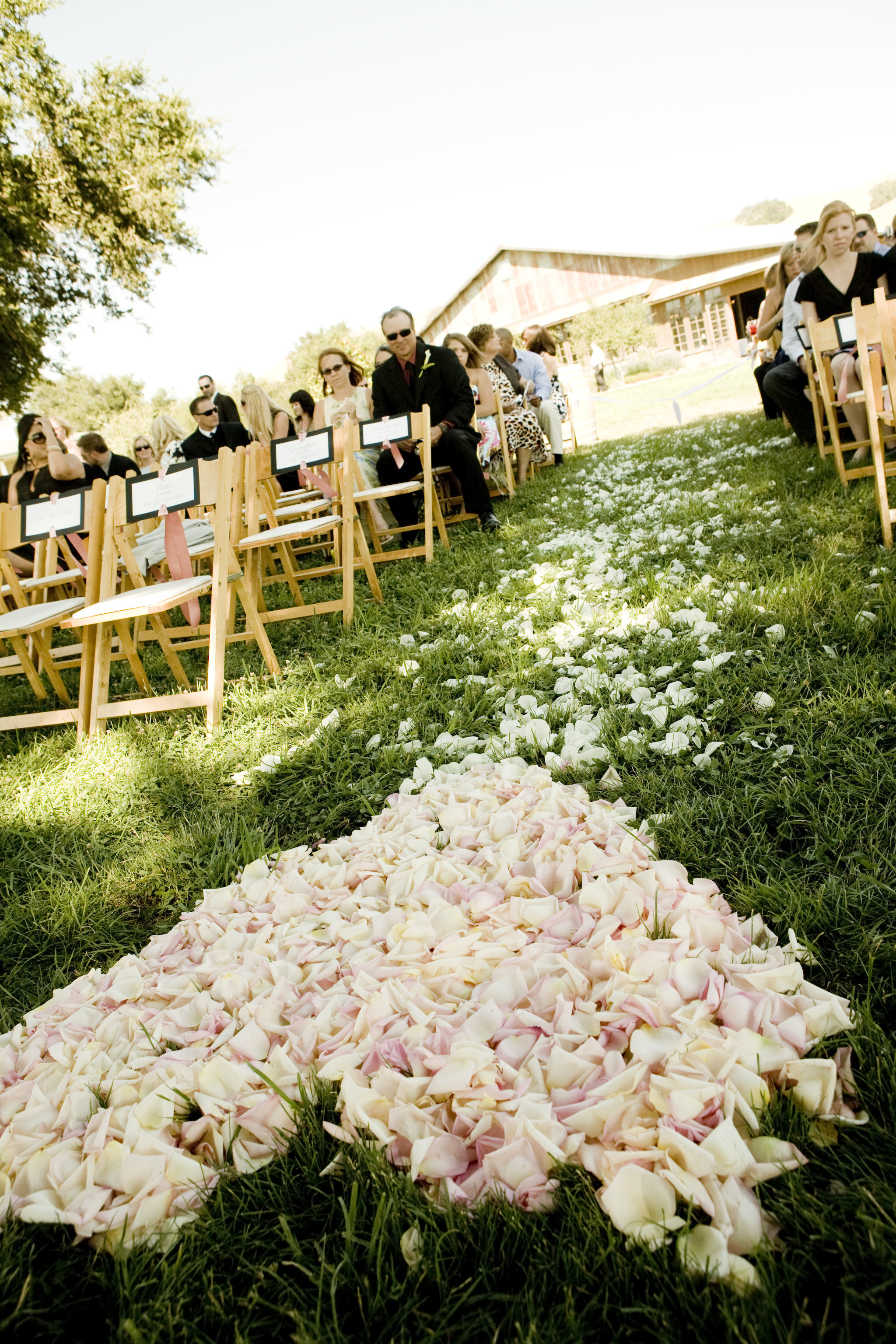 Ceremony, Flowers & Decor, pink, Ceremony Flowers, Aisle Decor, Tables & Seating, Flowers, Firestone, Chairs, Aisle, Crossroads, A taylor made wedding