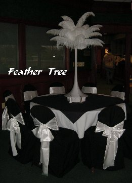 Beauty, Feathers, Centerpiece, Chair, Cover, Feather, All occasions plus