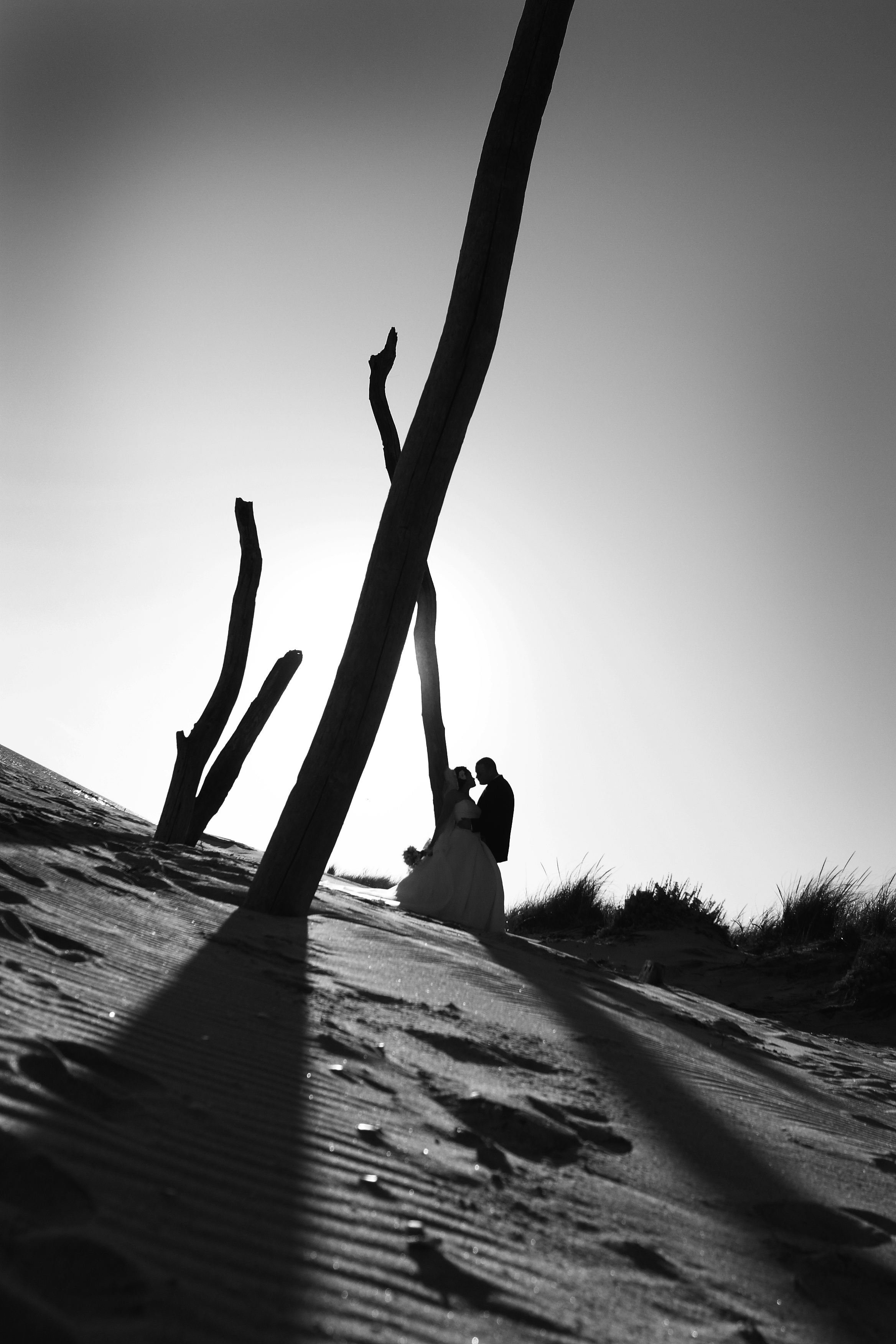 white, black, Beach, Of, And, Couple, By, A, On, Print, Standing, Driftwood