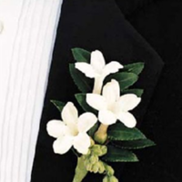 Flowers & Decor, Flowers, Boutonniere_groom