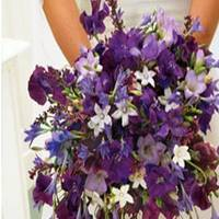 Flowers & Decor, Flowers, Bridal_bouquet