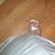 1375035638 small thumb 55b1faaaa6b43944dd3f470f47f88b6f