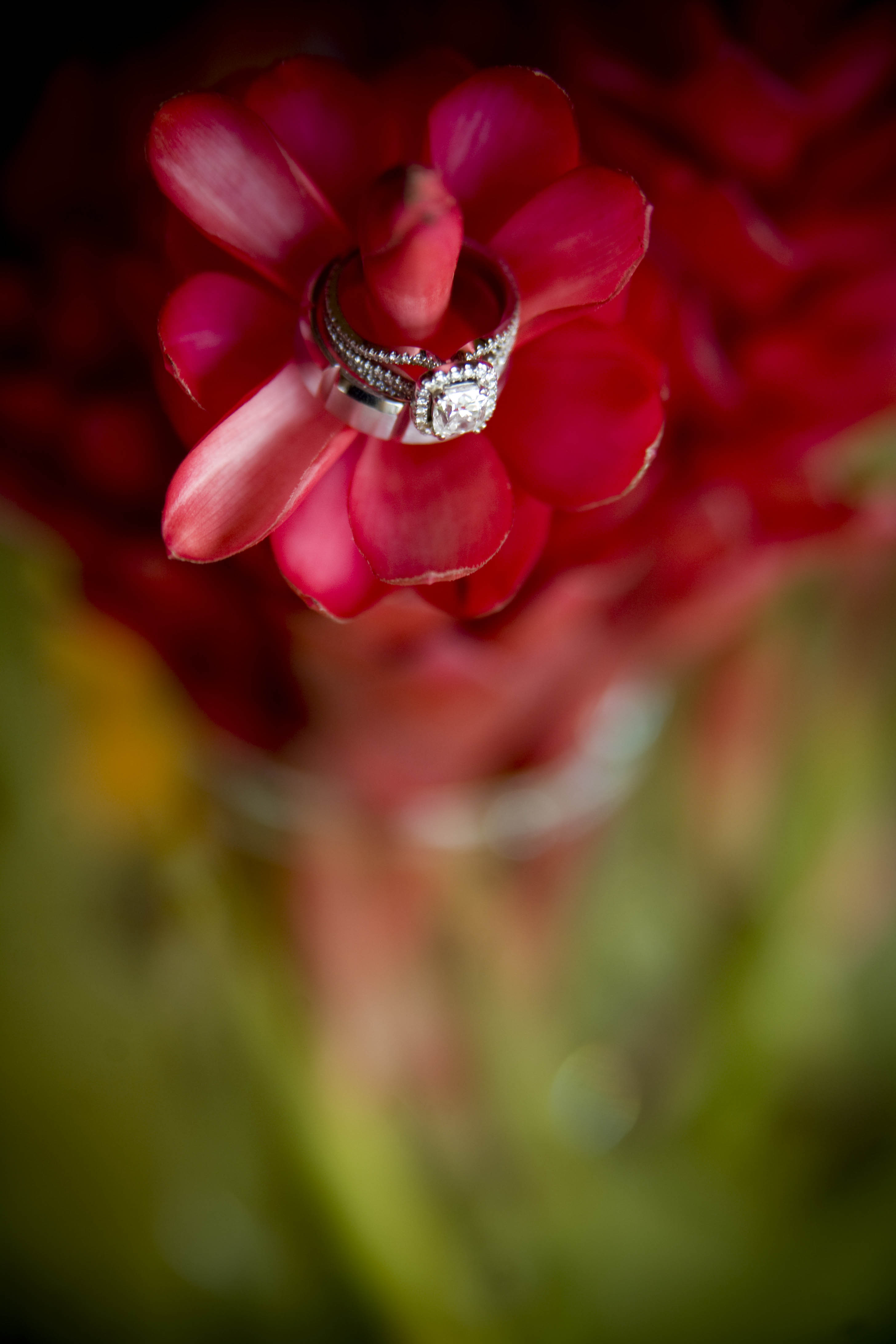 red, green, Ring, Details, Fino photography