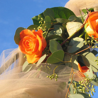 Ceremony, Flowers & Decor, orange, Ceremony Flowers, Flowers, Roses, Arch, An impressive event, Flower arch