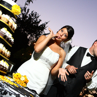 Cakes, cake, Cupcakes, Bride, Groom, And, Cutting, Estate, Clarke, Felicia perry photography