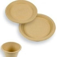 Registry, Place Settings, Plates
