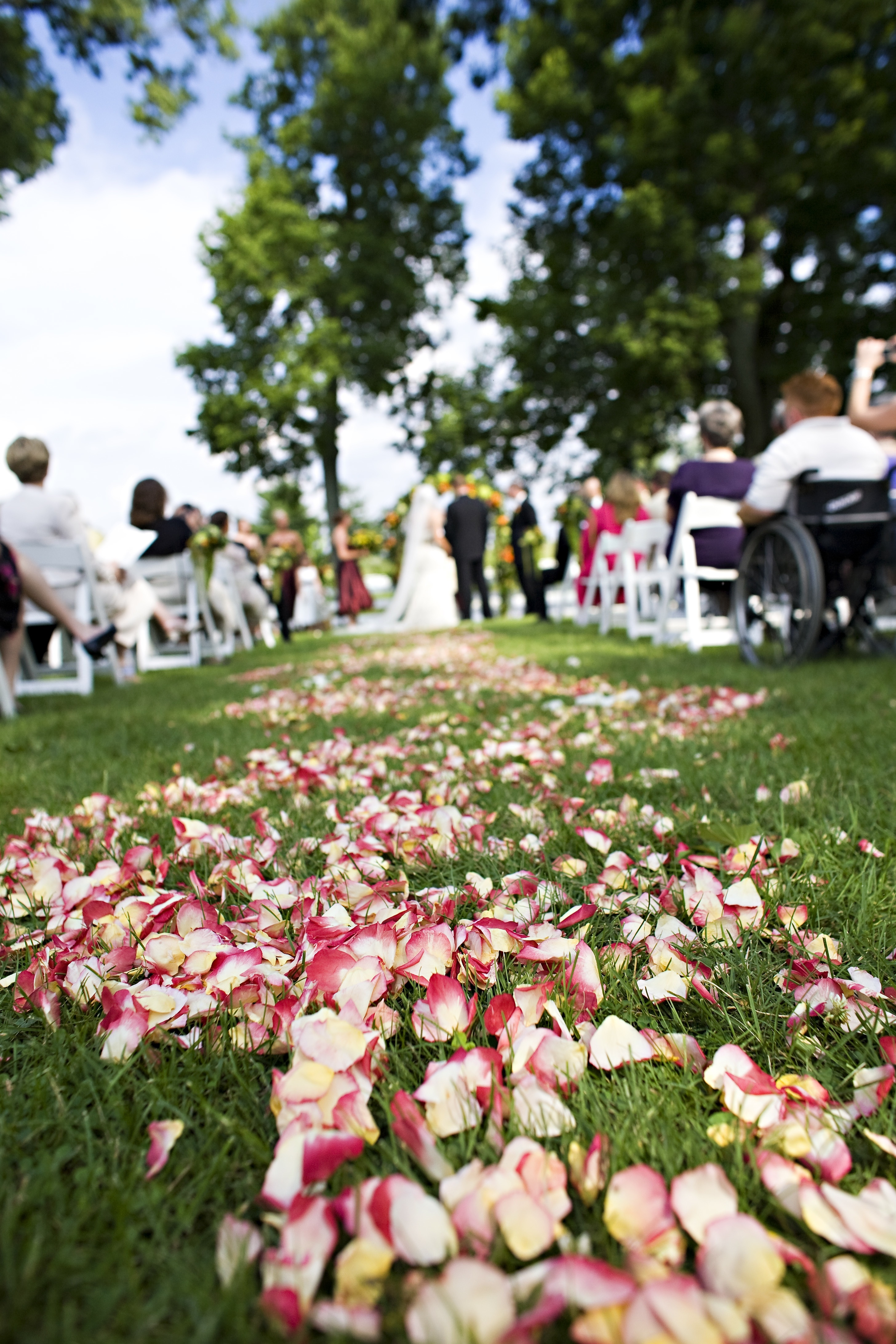 Flowers & Decor, Flowers, Petals, Aisle runner