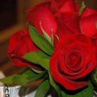 Flowers & Decor, Centerpieces, Flowers, Roses, Flower, Girl, Centerpiece