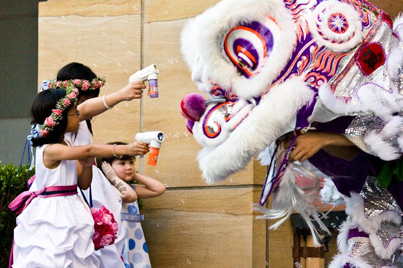 Flowers & Decor, Flower, Girls, Lion, Dancers, Events by karen lee, Performance