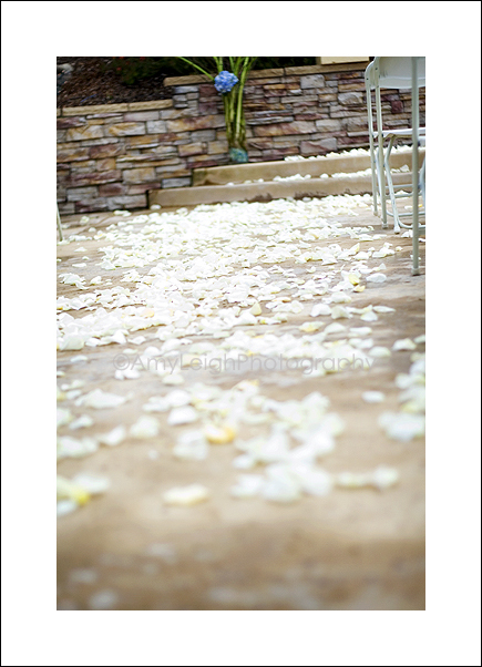 Flowers & Decor, white, Aisle Decor, Flowers, Aisle, Ashley kohler events