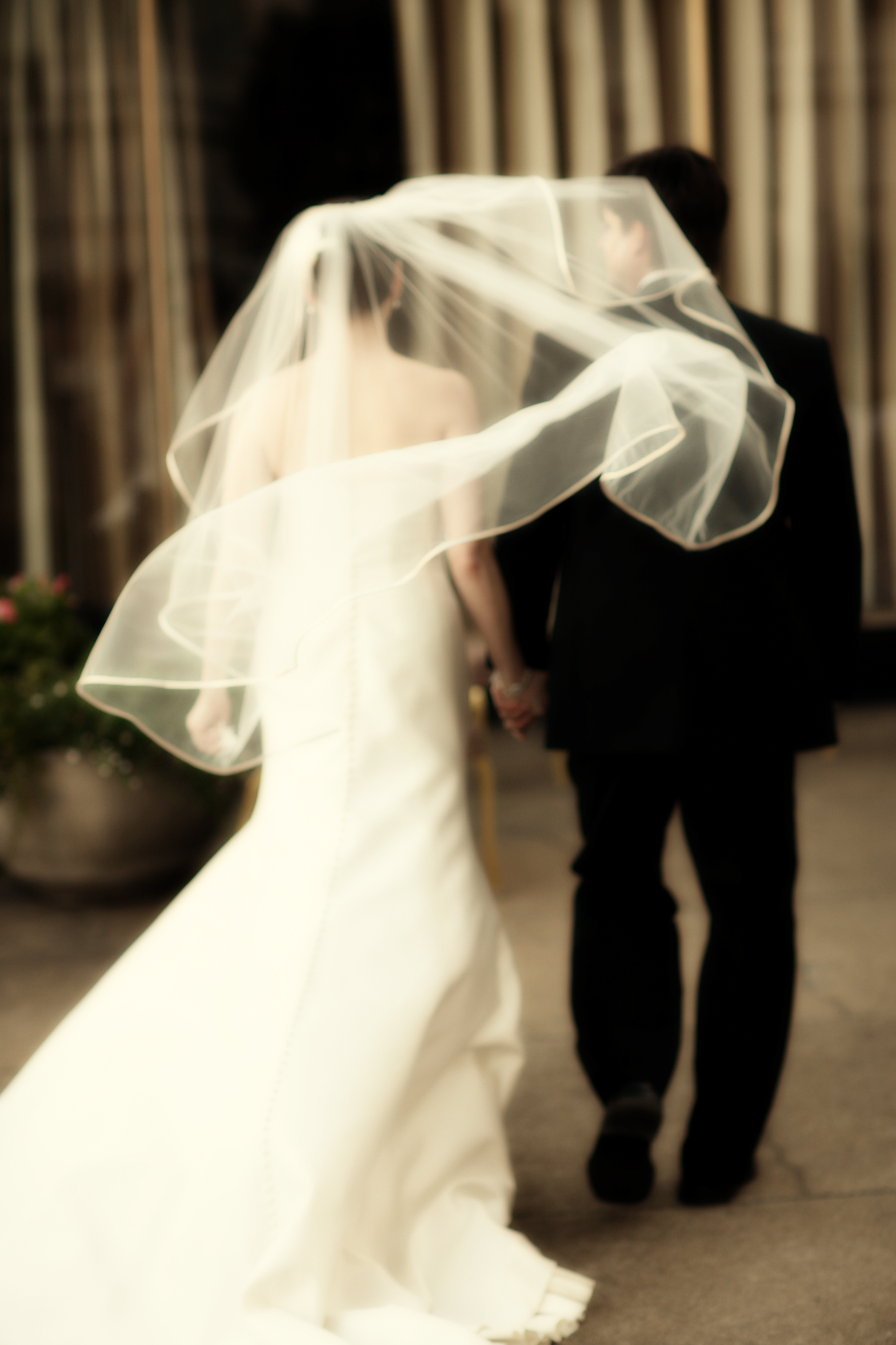 Veils, Photography, Fashion, Veil, San francisco, Downey street events, Annie mcelwain