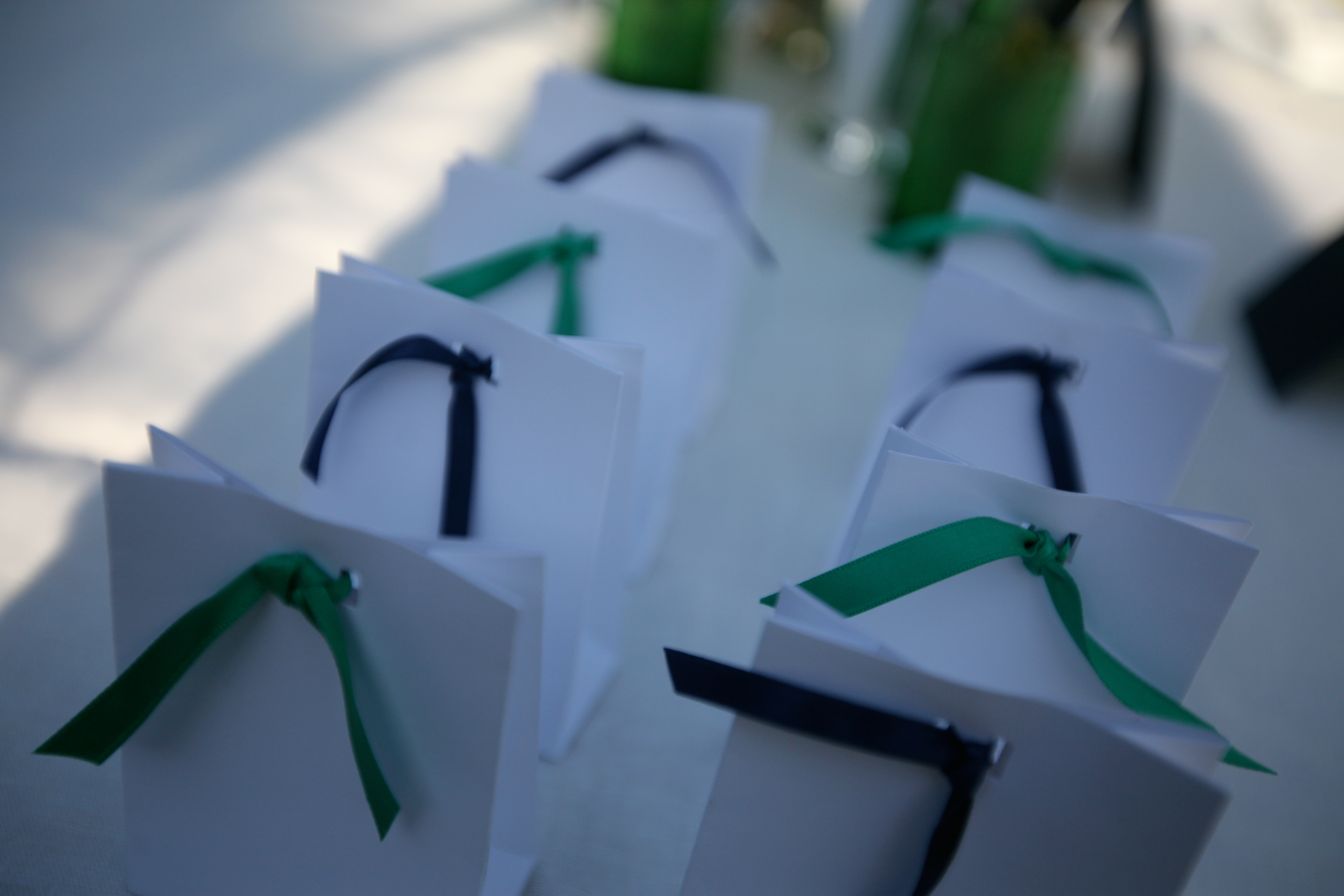 DIY, Favors & Gifts, blue, green, Favors, Downey street events