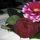 1375038389 small thumb 27649e64f0e8aa797bd4b9320db3f632