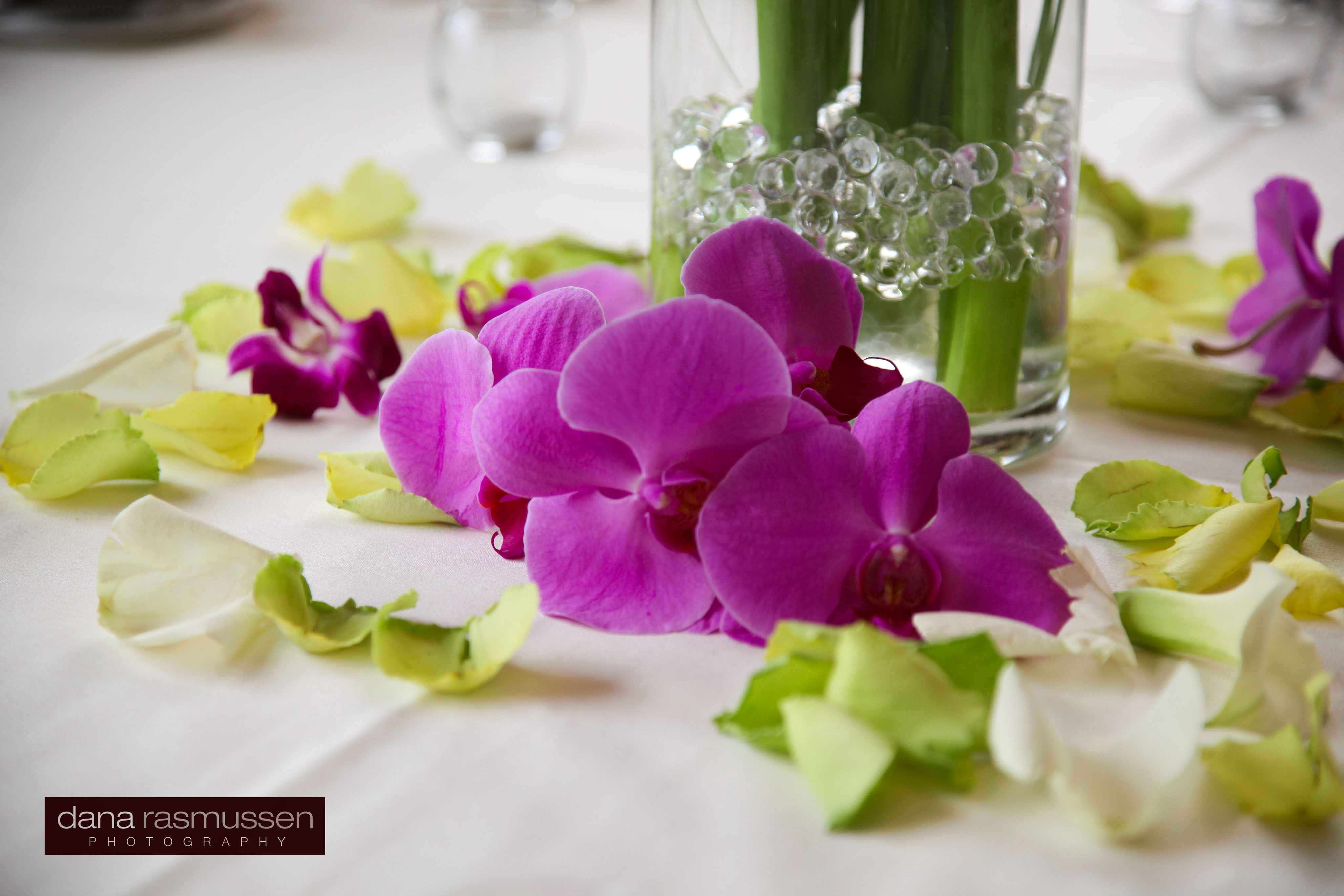 Reception, Flowers & Decor, purple, Centerpieces, Flower, Centerpiece, Orchid, inc, Weddings by stephanie