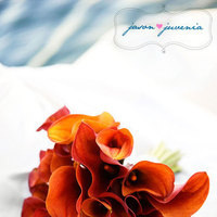 orange, red, Bouquet, Gown, Calla, Bridal, Ocean, Water, Lillies, Jason and juvenia